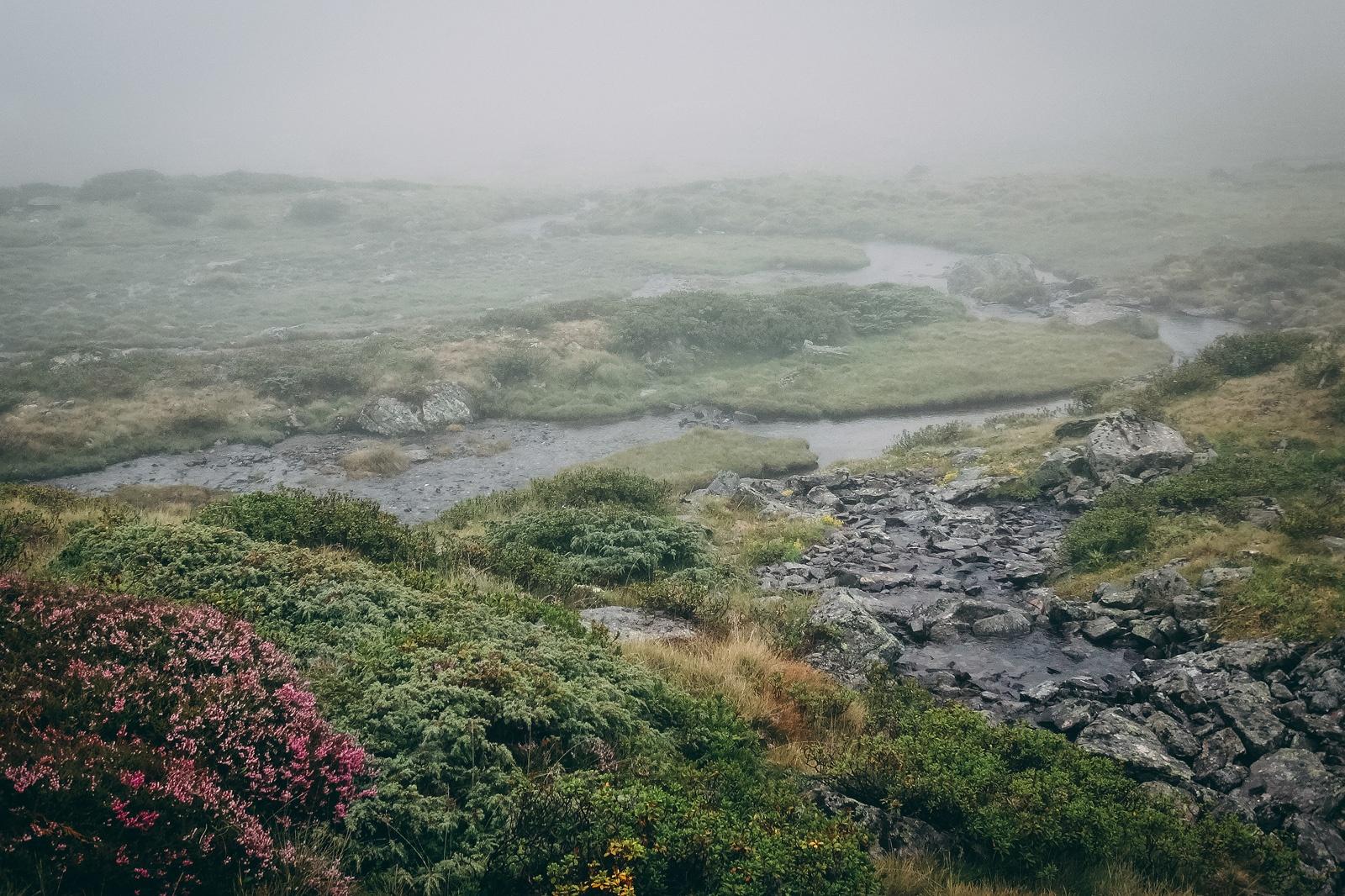 Trotz Nebel war's eine tolle Stimmung ...