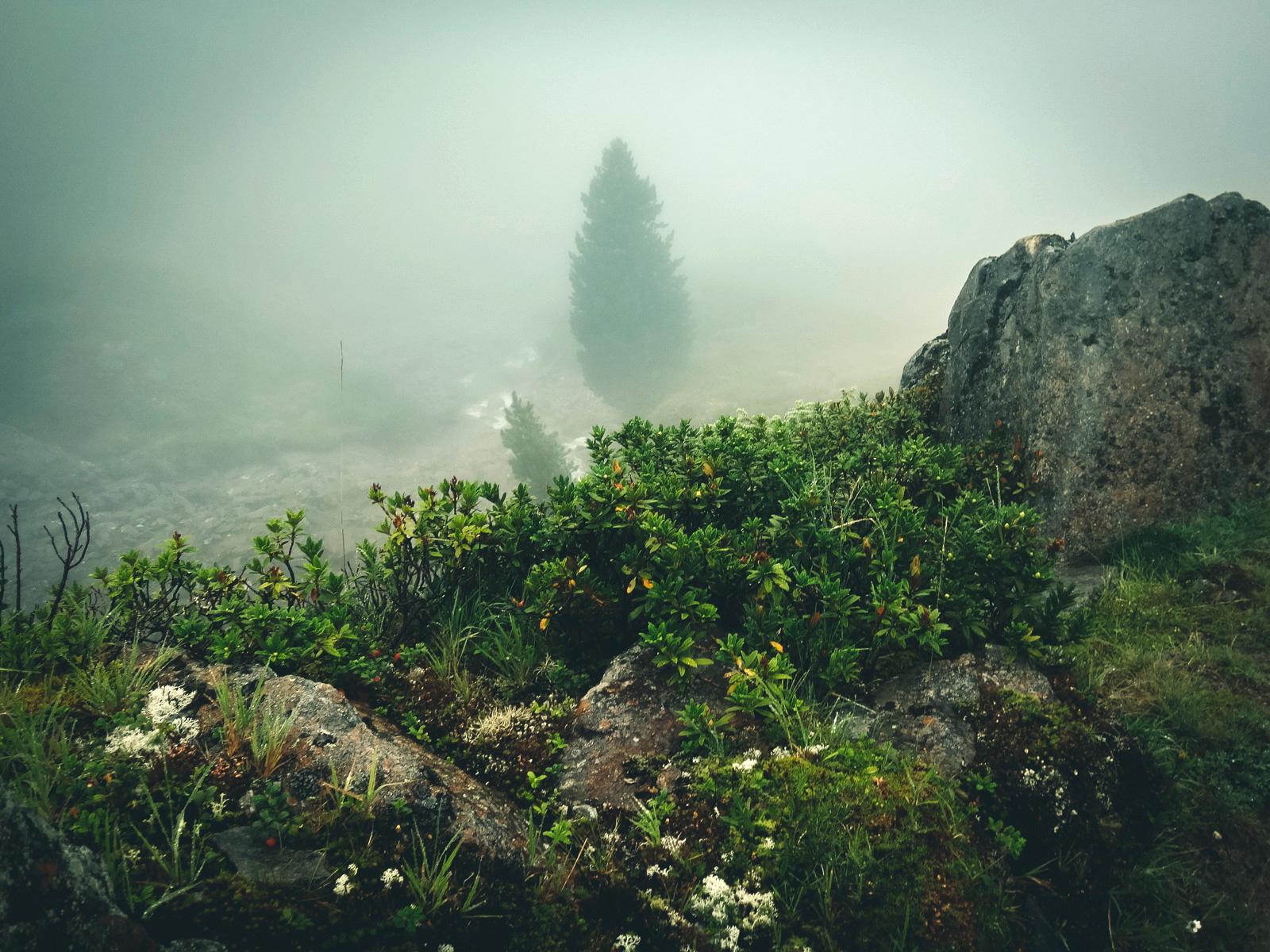 Rückweg von der Pforzheimer Hütte durchs Gleirschtal – auch in Nebel und Regen schön!
