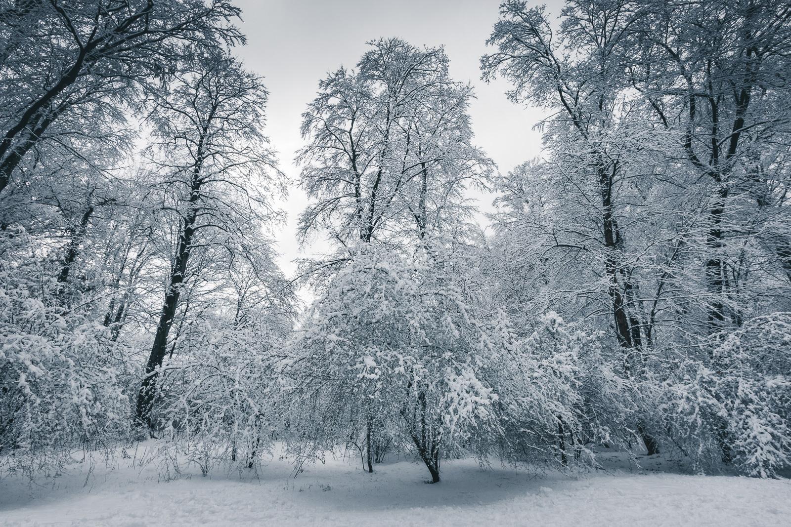 Winterwonderland – und das mitten in der Stadt