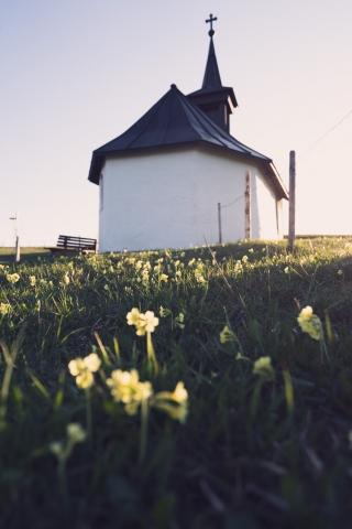 Allgäu, Deutschland, Kapelle, Blümchen, Frühling