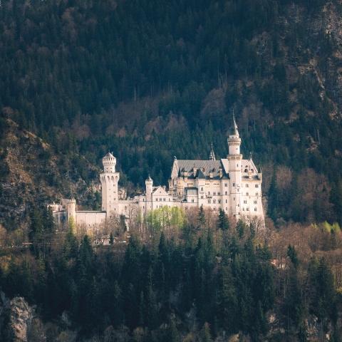 Schloss Neuschwanstein, Füssen, Schwangau, Allgäu, Deutschland, Schloss, Märchen, Wald