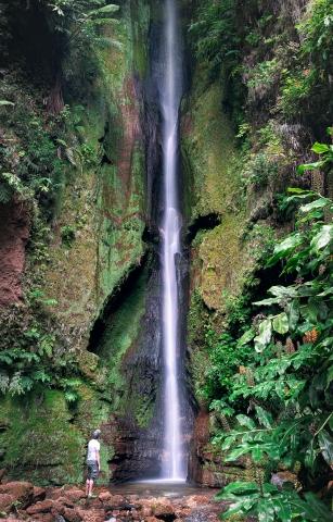 """Der """"Salto do Rosal"""" im Jardim José do Canto auf São Miguel (Azoren)"""