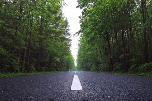 Straße, Wald, Landstraße, Bäume,