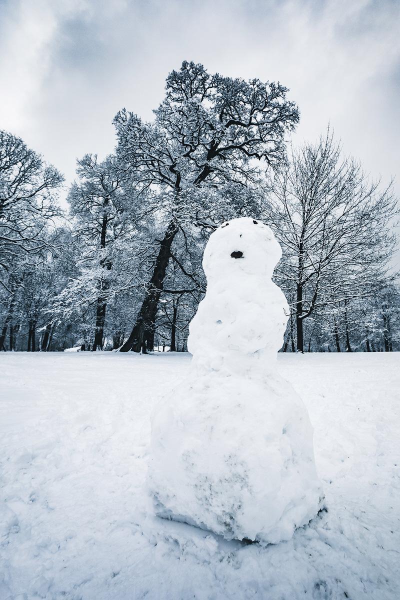 Schneemann, Englischer Garten, München, Winter, Bäume