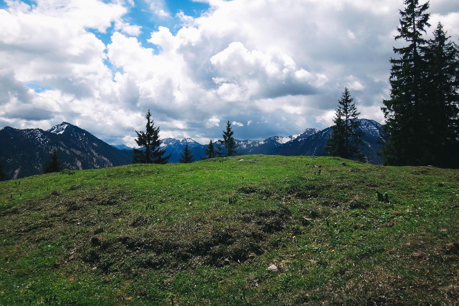 Alpenpanorama auf dem Weg zur Baumgartenschneid