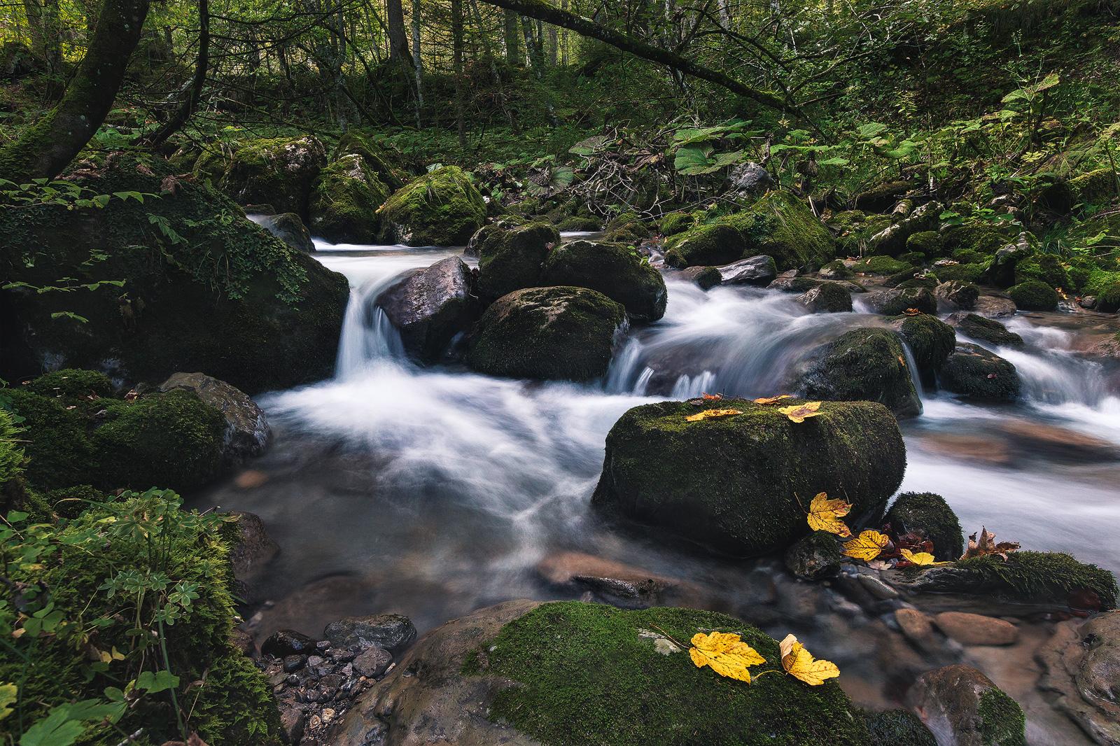 Fotospot Leuenfall, Wasserfall, Appenzell, Schweiz, kathrinsworld, Kathrin's World